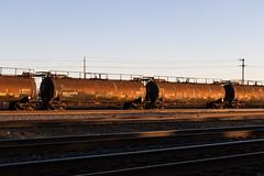 Antelope Oil Cans (ScholzRUNNER) Tags: trains transportation tracks railroad railroadphotography antelope california usa landscape lastlight goldenhour unionpacificrailroad uprr tankcar oiltanker freighttrain