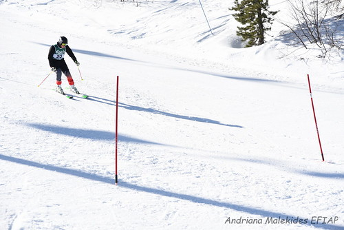 Alpine Races I & II Feb 2019_01