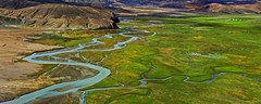 Quiet it flows.... (Lopamudra !) Tags: lopamudra lopamudrabarman lopa landscape ladakh himalaya himalayas highaltitude highland india hanle plateau river stream water waterscape green verdant valley vale colour color colours colourful cold jk beauty beautiful picturesque
