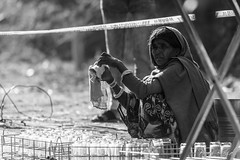 Inconspicious Service (PB1_2263) (Param-Roving-Photog) Tags: support service staff worker labour woman female local tribal rural sqautting working clean glass dining bobmcrm2019 ridermania udaipur rajasthan portrait streetphotography candid blackandwhite bw monochrome visualstoryteller seeingthingsdifferently paramrovingphotog parambhogal
