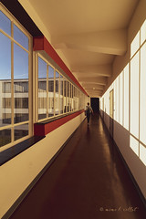 On the catwalk (mimo b. rokket) Tags: modernarchitecture modernearchitektur modern architecture architektur contemporary linen lines flucht geometrie geometry geometrischeformen reflections reflektionen flur wideangle weitwinkel canonefs1018mmf4556isstm fenster windows interior