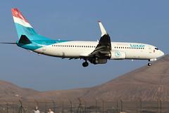 LX-LGU_02 (GH@BHD) Tags: lxlgu boeing 737 738 737800 b737 b738 lg lgg luxair ace gcrr arrecifeairport arrecife lanzarote a aircraft aviation airliner