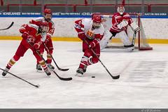 Troja vs Skövde 02 (himma66) Tags: onepartnergroup hockey ishockey icehockey youth troja trojaljungby skövde ice cup puck skate team ljungby ljungbyarena