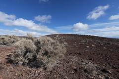 --- (Kaeurialias) Tags: nikond850 deathvalley ca california usa nationalparks landscape sigma