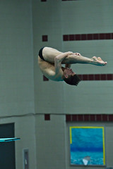 142A0892 (Roy8236) Tags: gmu american old dominion swim dive