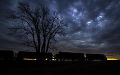 The Return (Seven Tracks Photography) Tags: ic sd70 ic1008 illinoiscentral canadiannational cn champaignsubdivision tuscola illinois manifest a408 southbound emd photography sunrise power locomotive outdoor mixedfreight freight horn k3la unit train track railroad railfan rail