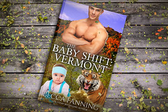 The Baby Shift Vermont (Mnsartstudio) Tags: bookcoverdesign bookcover ebookcoverdesign ebook ebookcover createspace createspacecoverdesign createspacecover