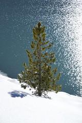 Speicher Längental II (picturesfrommars) Tags: speicher längental austria österreich a7ii ilce7m2 fe sel1635z nature