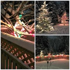 Nightly Glow (karma (Karen)) Tags: baltimore maryland backyard fences lights trees snow triptych picmonkey hff