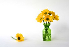 Flowers (linda_lou2) Tags: 52weeksof2019 week7 themebalancingelements categorytechnique odc yellow flower mums vase green