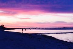 Sunset in Rosebud (Gisel 15) Tags: australia victoria dusk ocean beach sunset