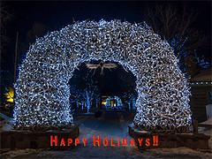 Winter Holiday Lights (Jerry T Patterson) Tags: jacksonhole jackson wyoming wy townsquare christmas newyears winter epicshotz worldshotz natgeoyourphoto