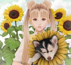 LAQ - Ivy (Gabriella Marshdevil ~ Trying to catch up!) Tags: sl secondlife cute kawaii doll sailormoon blackbantam meshhead bento laq lolita olive tsg