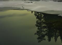 evening light (tskogset) Tags: light eveninglight silence reflection reinheimen nationalpark nature ice snow winter water river ottariver skjåk oppland norway flickr hdpentaxdfa28105mmf3556eddcwr pentaxk1mkll