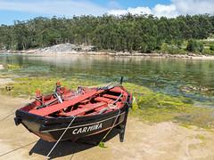 Carmina (miguelno) Tags: punta moreiras grove pontevedra panasonic lumix fz1000 ría barca