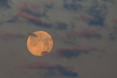 Morning Full Moon (stephaniepluscht) Tags: alabama gulf shores full moon setting set moonset morning sky clouds