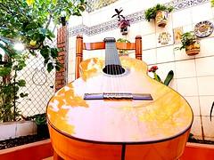 Mi patio con aires flamencos (carlos_rodri_m) Tags: samsung smg960f guitarra verde green plantas macetas limon amarillo yellow silla