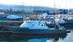 Scotland Greenock docked the nautical training ship SMIT Yare 27 February 2019 by Anne MacKay (Anne MacKay images of interest & wonder) Tags: scotland greenock dock docks nautical training ship smit yare 27 february 2019 picture by anne mackay