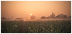 All Saints C of E Church (Ian Emerson (Thanks for all the comments and faves) Tags: church sun sunrise earlymorning mist spire cofechurch cotgrave nottingham rapeseed field photography morning hazy canon6d 24105 outdoor landscape