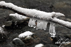 Ice sculptures in the middle of a small river (chk.photo) Tags: outdoor salzburg baum fluss landscape nature skulptur ngc eis river natur ice naturewatcher naturemasterclass