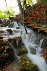 Fall (sfryers) Tags: plitvicelakes plitvičkajezera nationalpark forest trees autumn leaves waterfall water unesco worldheritagesite croatia hrvatska smc pentaxda 15mm 14 limited
