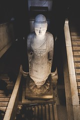 (J. Adams.) Tags: primelens prime faded fade atmospheric moody dark stairs stone archaeology relic ancient old statue britishmuseum museum uk england city london slowshutterspeed photography dslr architecture building wideangle 2428 24mm 6dmk2 6dmark2 6dmarkii canon