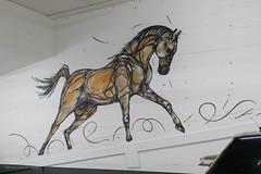 Horse Power (Cheetah_flicks) Tags: beeldendekunst dzia europa plaatsen belgië streetart kunstenaarsgrafischontwerper parkingstadsschouwburgantwerpen antwerpen antwerp belgium europe