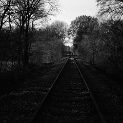 Old track (Rosenthal Photography) Tags: fomapan400 dezember epsonv800 landschaft mittelformat ff120 januar analog schwarzweiss asa400 rodinal15021°c11min winter zeissikonnettar51816 20190201 track trail path pathway way railway landscape mood february zeiss ikon nettar 51816 novar anastigmat 75mm f45 fomapan rodinal 150 epson v800