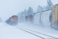 Snow at Silver (evanlofback) Tags: railroadbnsf spokanesub enginebnsf manifest coal meet silver northpole cloudy winter snow