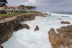 IMG_9785 (mudsharkalex) Tags: california pacificgrove pacificgroveca