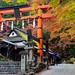 Ryōbu Torii