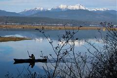 Just passing Thru (Mïk) Tags: skokomishriver skok hoodscanal sr106 olympicmountains delta saltwater kayak boat oar float