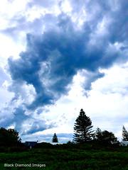 Grey Clouds over Diamond Beach, Hallidays Point, Mid North Coast, NSW (Black Diamond Images) Tags: appleiphonex iphonexbackdualcamera iphonex iphone greyclouds diamondbeach hallidayspoint midnorthcoast nsw clouds rainclouds australianbeaches beaches beach nswbeaches australia appleiphone