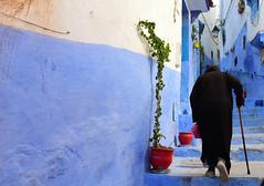 Chefchaouen, Morocco, January 2019 D810 607 (tango-) Tags: chefchaouen bluecity villaggioblu bluevillage morocco maroc 摩洛哥 marruecos марокко المغرب