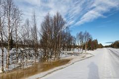 Z19_0991 LT (Zoran Babich) Tags: lapland lappi finland suomi winter snow landscape muonio fi