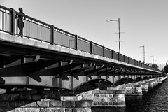 """We build too many walls and not enough bridges""  Isaac Newton (WilliamND4) Tags: fencefriday hff blackandwhite boston bridge"