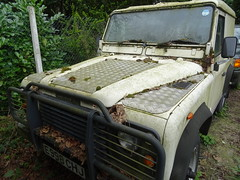 1987 Land Rover 90 (Neil's classics) Tags: vehicle 1987 land rover 90 2495cc abandoned landrover offroad wagon