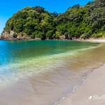 Watkin Powell Track- Whananaki, Northland, New Zealand thumbnail