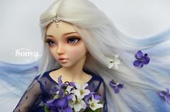 DSC_2172 (sonya_wig) Tags: fairytreewigs wig bjdwig minifeewig bjd bjdminifee minifeechloe handmadedoll bjddoll dollphoto fairyland fairylandminifee minifee chloe bjdphotographycoloringhair
