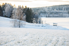 Mårten_Svensson_2U9A8926
