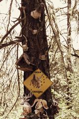 Sterlingville Cemetery (Twilight Star Photography) Tags: cemeteries cemetery ghosttown ghosttowncemetery graveyard sterlingvillecemetery necropolis restingplace sterlingville oregon usa