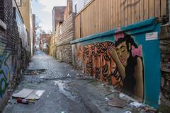 Bolivar Alley (pasa47) Tags: 2019 march spring fujifilm fujixe1 1855mm cincinnati ohio oh bolivaralley alley graffitialley pendleton