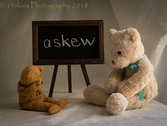 Bless You (HTBT) (13skies) Tags: achoo sneeze foolingaround playing kidding blackboard words knowledge learning teach teddybeartuesday attention wronganswer ha really htbt two writing happyteddybeartuesday what surprise problem