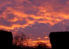Sunday Sunrise (Tudor Barlow) Tags: headlesscross redditch worcestershire england sunrise winter lumixfz200