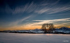 Marche - tramonto invernale (luigi.alesi) Tags: marche torreberegna italia italy macerata torre beregna paesaggio landscape scenery inverno winter neve sonw tramonto sunset cielo sky natura nature peace relax quiete alberi trees nikon d750 raw