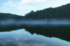Fleeting (charhedman) Tags: todinlet veryquicklydisappearingfog mountains reflections mist boat ducks thesameplaceandtimeasdisappearingact victoria thelineoffogwasgoneinminutes