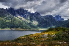 The enchanted valley (marko.erman) Tags: nordland sea mountains water clouds beautiful sony scenic idyllic nature outdoor outside travel popular quiet serenity pure transparency landscape nordic steep sunny montagne ciel paysage eau mer reflections lofoten panorama baie océan colorful color couleur jaune dramatic norway e10