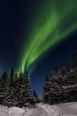 Z19_0252 LT (Zoran Babich) Tags: winter snow lapland lappi finland suomi northernlights auroraborealis