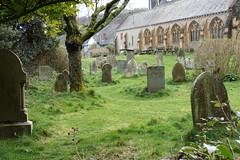 Churchyard of St Mary's, Lynton (Bill Boaden) Tags: northdevon lynton anglican church churchyard gravestones