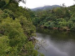 Tsing Tam Reservoir (cowyeow) Tags: green landscape forest trees nature hongkong china chinese asia asian beautiful water lake reservoir hopui shekkong taimoshan